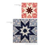 Feathered Star Quilt Blocks 1 by Feathered Star by Marsha McCloskey Reproduction & Traditional - OzQuilts