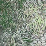 Bush Yam x 2 in Green Australian Aboriginal Art Fabric by Jeannie Pitjara by M & S Textiles Cut from the Bolt - OzQuilts