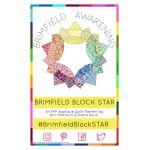 The Brimfield Star Block Pattern by Brimfield Awakening Paper Pieces Kits & Templates - OzQuilts