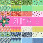 Quilt Kit Zuma Aurora by Tula Pink by Tula Pink Kits - OzQuilts