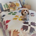 Quiltsmart Bear Paw & Maple Leaf Printed Interfacing Panels by Quiltsmart Quiltsmart Kits - OzQuilts