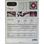 Quiltsmart Dahlia Pattern & Printed Fusible Interfacing Quilt Kit by Quiltsmart Quiltsmart Kits - OzQuilts