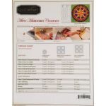 Quiltsmart Mini-mariners Compass Pattern & Printed Fusible Interfacing Quilt Kit by Quiltsmart Quiltsmart Kits - OzQuilts