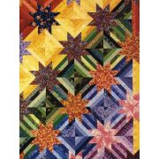 Hunter Star Quilts & Beyond by C&T Publishing - Quilt Books