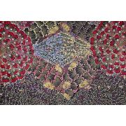 Bush Banana Australian Aboriginal Art Fabric by Donna Abbots by M & S Textiles Cut from the Bolt - OzQuilts
