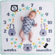 Milestone Memories Quilt Pattern by Melly & Me - Includes Perspex Arrow & Bear ring templates by Melly & Me Quilt Patterns - OzQuilts