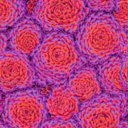 Succulent - Red by The Kaffe Fassett Collective - Succulent