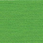 Rasant 1099 Bright Kelly Green 1000m by Rasant Greens - OzQuilts