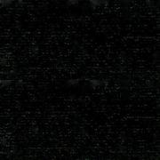 Rasant 4000 Black 1000m by Rasant Whites & Blacks - OzQuilts
