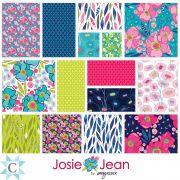 Josie Jean Collection 15 Fat Quarter Pack by Clothworks - Fat Quarter Packs