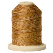 Signature Cotton Variegated Thread 40wt 700 Yards Tan Tints by  - Variegated Cotton 40wt 700 Yards