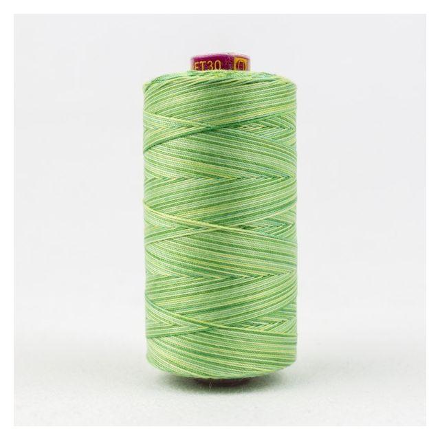 Wonderfil Fruitti, Leaves (FT30) Thread by Wonderfil  Fruitti 12wt Cotton Variegated  - OzQuilts