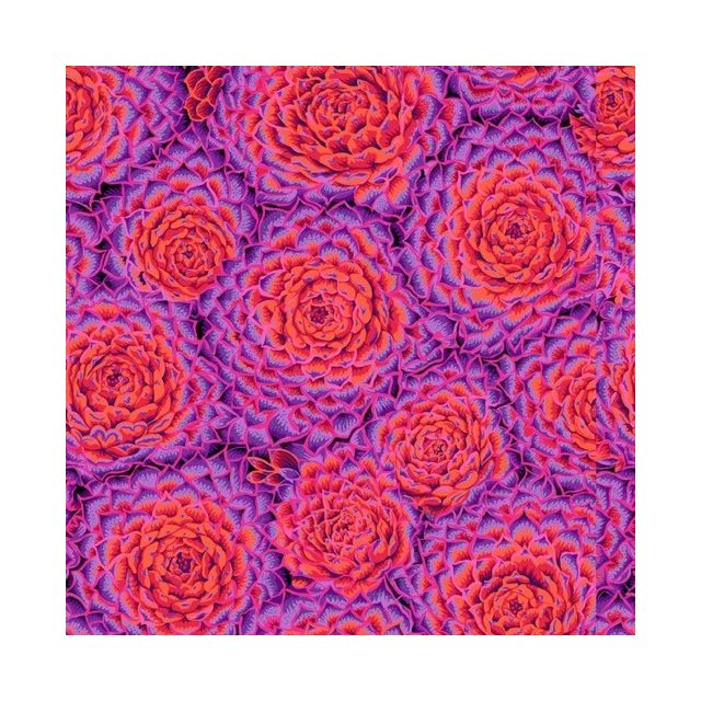 Succulent - Red by The Kaffe Fassett Collective Succulent - OzQuilts